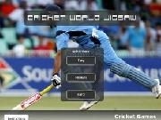 Play Cricket world jigsaw