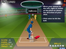 Play Cricket pinch hitter