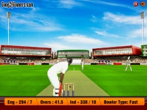 Play Super cricket