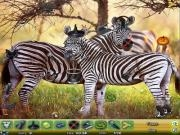 Play Zoo hidden objects 2