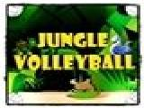 Play Jungle volleyball now