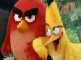 Play Angry birds shooter