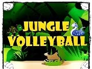 Play Jungle Volleyball 2Player now
