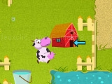 Play Crazy cow