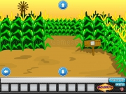 Play Escape Corn Maze now
