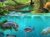 Play Sacred elements - water