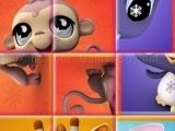 Little pet shop - rotate puzzle