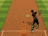 Play Cricket batter challenge