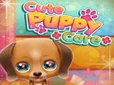 Play Cute puppy care now
