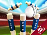 Play Cricket world cup game 2019 mini ground cricke