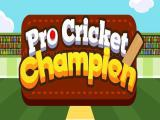 Play Pro cricket champion