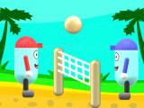 Play Beach volleyball now