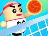 Play 3d amazing volleyball now