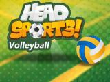 Play Head sports volleyball now