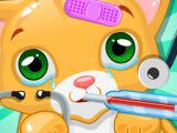 Play Kitty doctor now